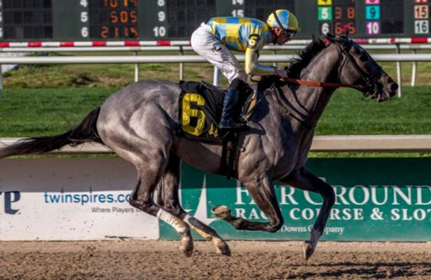 Gulfstream Park Entries & Results - Horse Racing Nation