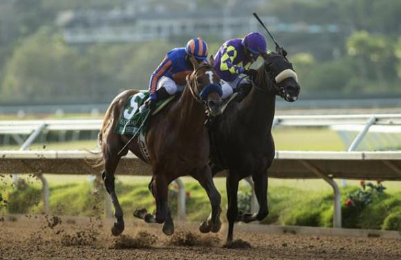Maximum Security set to take on five rivals in Pacific Classic