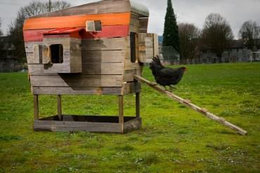 2013-march-april-1859-magazine-gardening-chicken-coop