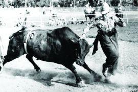july-august-2012-1859-eastern-oregon-pendleton-rodeo-history-george-doak-rodeo-clown-avoiding-bull-pendleton-round-up