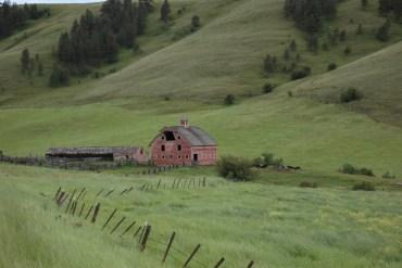 1859-oregons-birthday-photo-contest-eastern-oregon-1915-pink-barn-crow-creek-wallowa-county-dee-wise