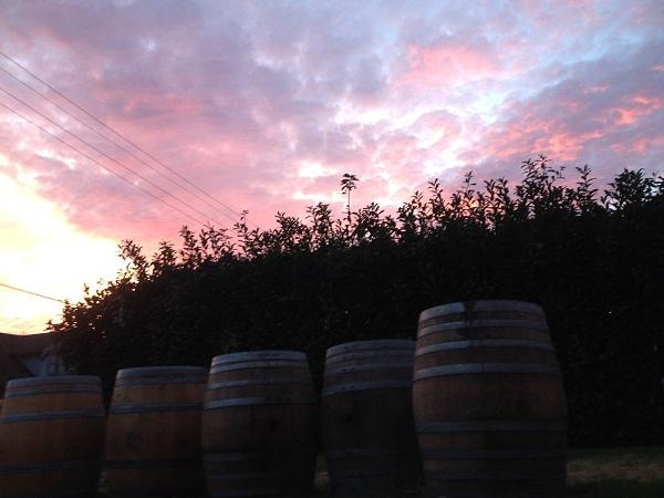 1859_beer_blogs_new_Oregon_breweries_8