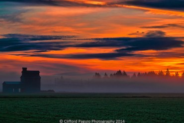 Photo-of-the-Week_Clifford-Paguio_November-30_McMinnville-Oregon_630x400