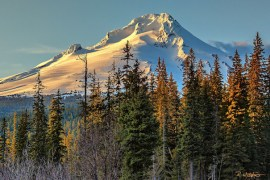 Photo-of-the-Week_Robb-Walther_November-16_Mt-Hood-Oregon_630x400