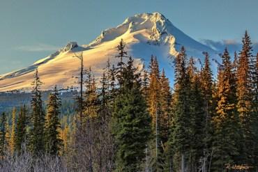 Photo-of-the-Week_Robb-Walther_November-16_Mt-Hood-Oregon_630x400