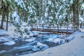 1859_Photo-of-the-Week_Jan-11_Cold-Springs-Creek-Oregon_Mike-Edwards_630x400