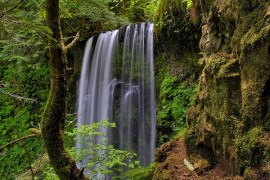 Oregon-Postcard_Douglas-Keder_630x400