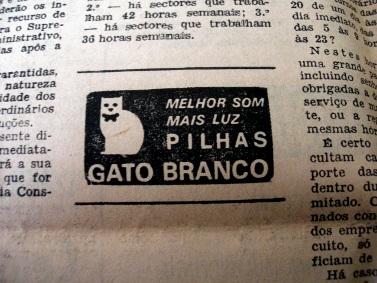 pilhas_gato_branco
