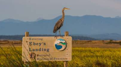 Ebeys Landing National Historic Reserve