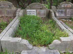 Ramsey Turnbull's grave - before photo