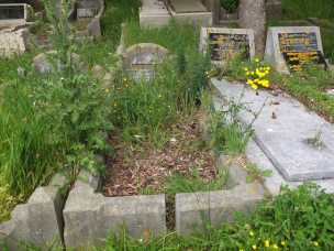 Mary Hood's grave - before photo