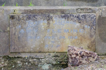 Amy Fleming's grave - closer view of the plaque