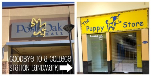 I was psyched to visit the Puppy Store at Post Oak Mall (which also had a semi-facelift), but I was CRUSHED to see it had closed! I spent countless hours there bonding with puppies I knew I wouldn't buy.