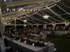 16 Strands of Twinkle Lights, 3 Large Brushed Gold Chandeliers