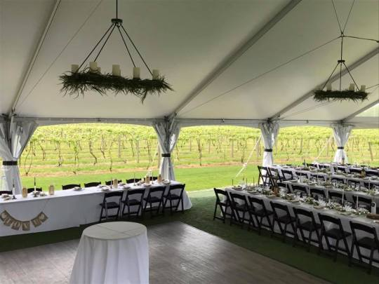 Rectangle Napa Chandelier with Greenery