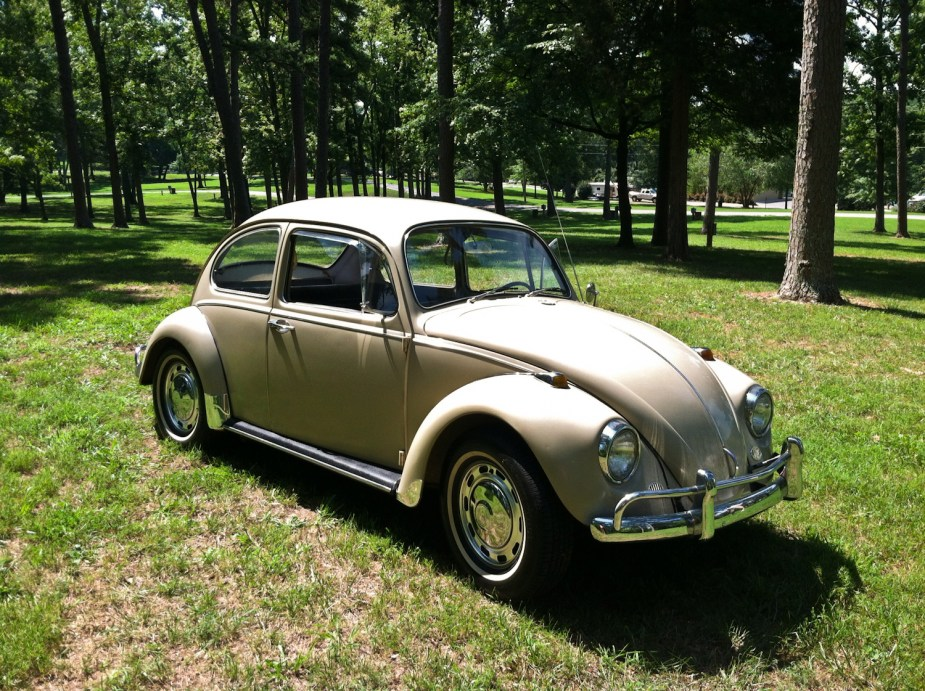 Featured '67 Beetle — Kevin Gabor