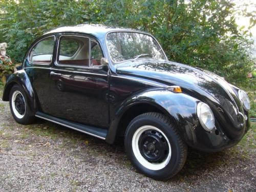 Featured '67 Beetle — Matthew Keen