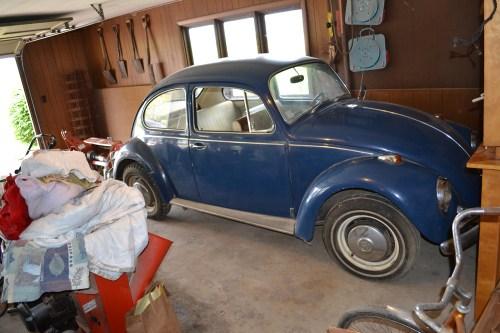 Featured '67 Beetle — Rees Klintworth