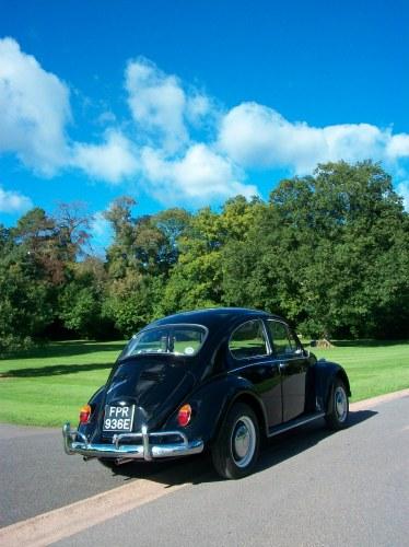 Featured '67 Beetle — Matthew Keen