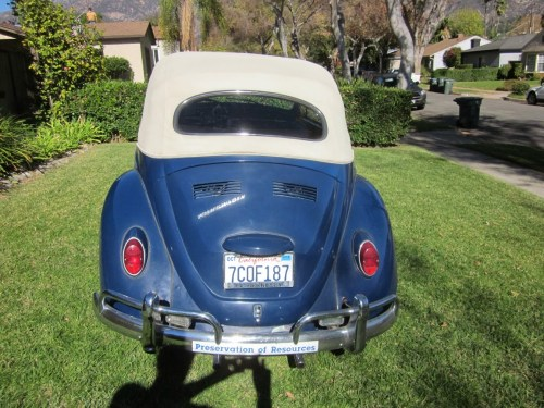 Featured '67 Beetle — Tim Presiado