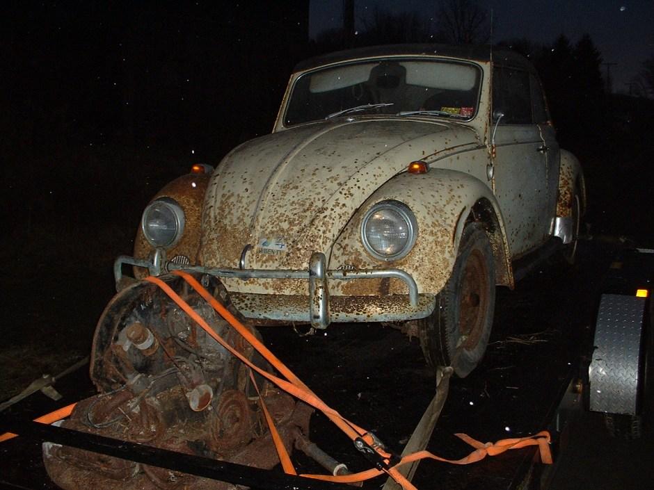 Featured '67 Beetle — Donna Fischer
