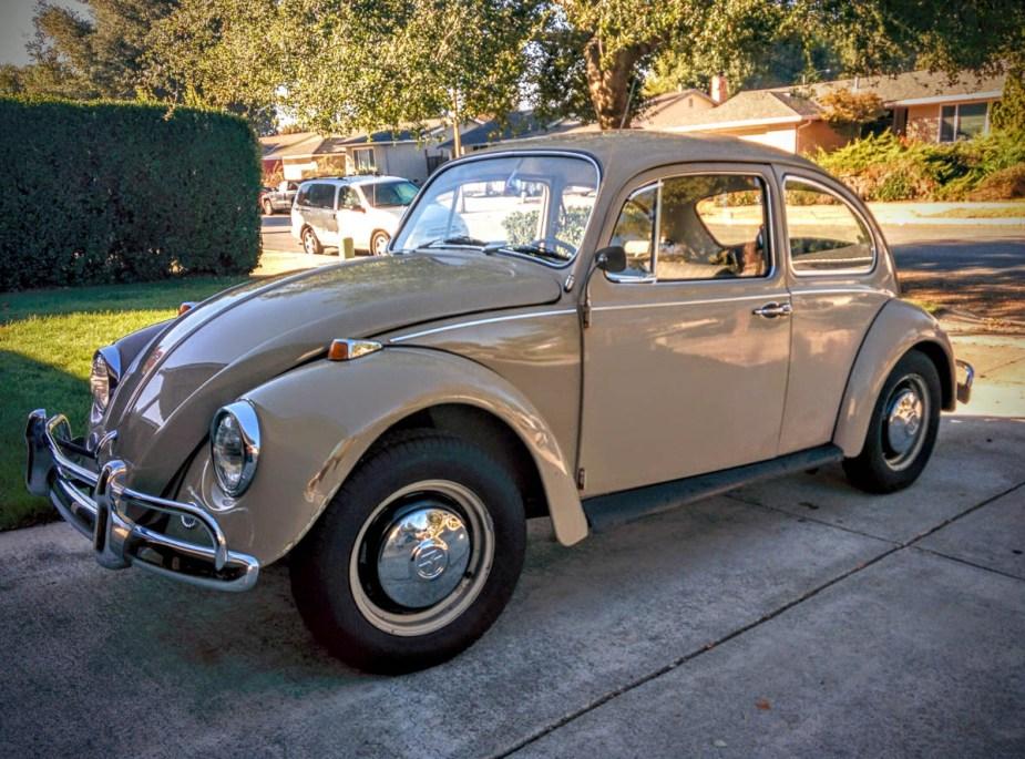 1967_bug-1