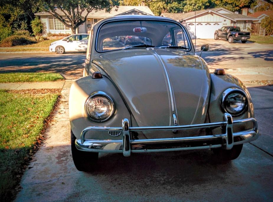 1967_bug-2