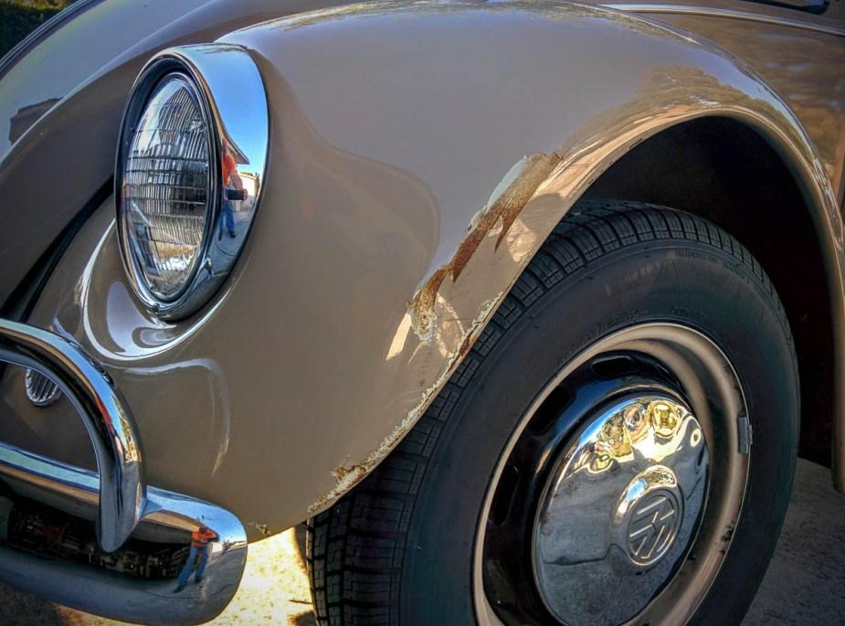1967_bug-24