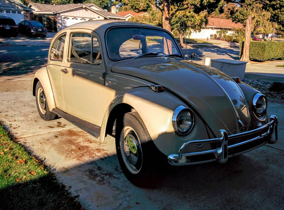 1967_bug-3