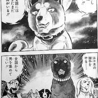 【絶 天狼抜刀牙!】「銀牙 -流れ星 銀-」「男たち」を集め、ヒグマと闘う、超激熱の犬漫画