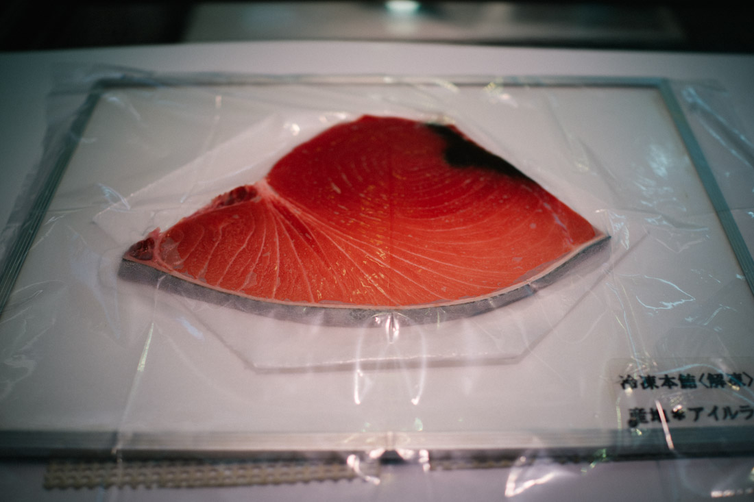 Tuna sample for buyers to see coloring and fat content — the fatter, the tastier, the better.