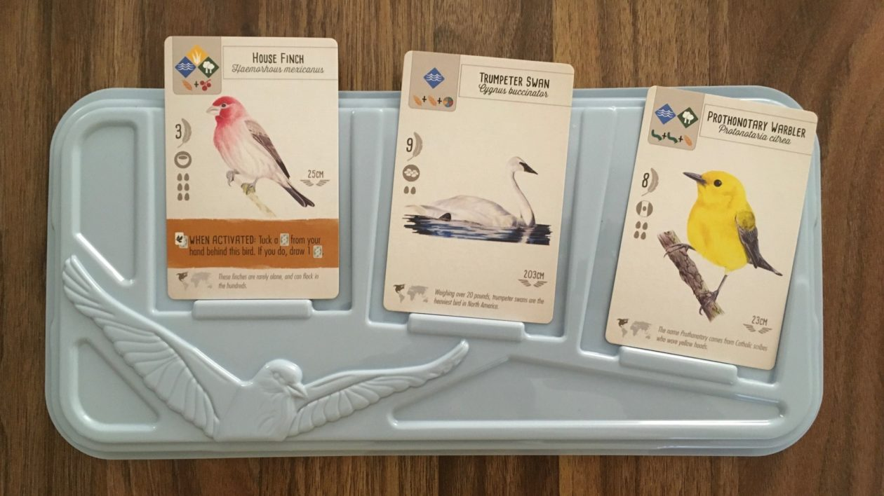 close up of a board game cards with birds on them
