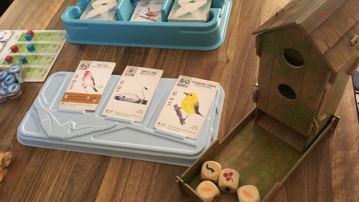 close up of game cards with birds on them