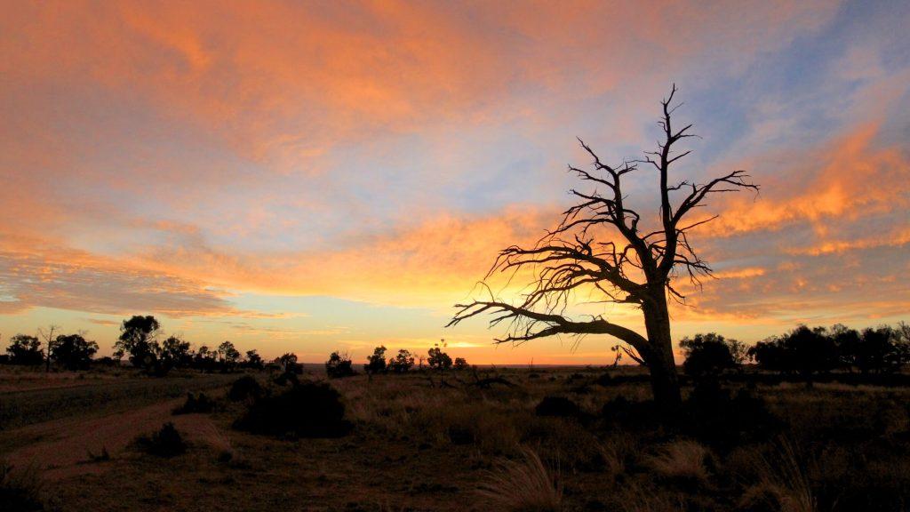 Morning Light, Mungo National Park  Buy Now