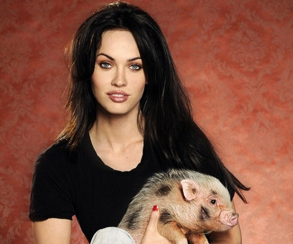what-are-the-foxy-facts-about-megan-fox-1571353260-may-16-2013-1-600x500