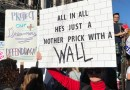 The Funniest Anti-Trump Signs