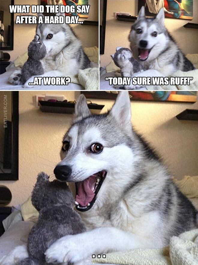 Bad puns dog meme.