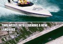 Ship Stuck In Suez Canal And Tiny Excavator To Free It Sparks Funny Memes