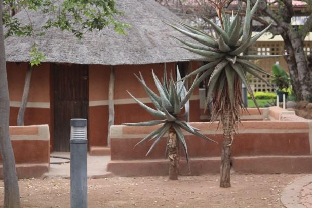 Botswana Museum