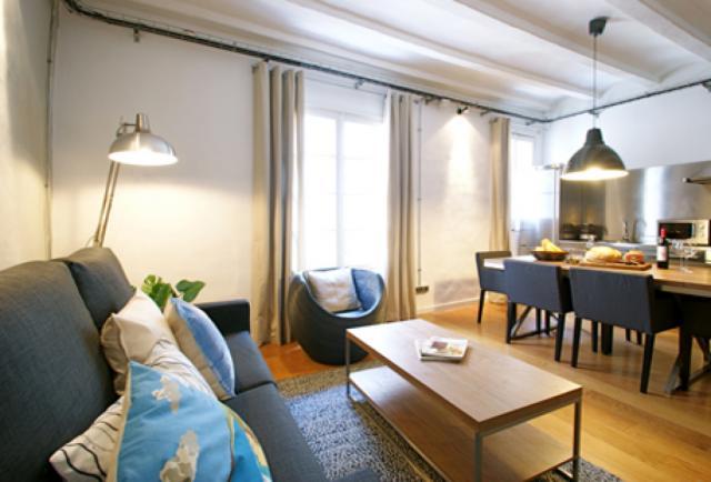 Gothic Loft Deluxe C Apartment Barcelona
