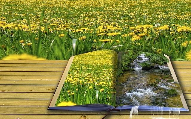 Top 5 Carti de Poezie ale Momentului