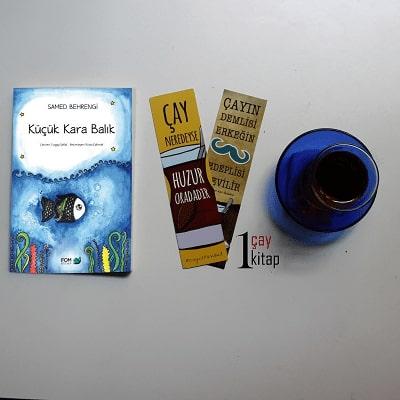 Küçük-Kara-Balık-samed-behrengi-kitap-yorumu