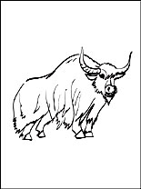 Yak Coloring Page For Kids Coloring Pages