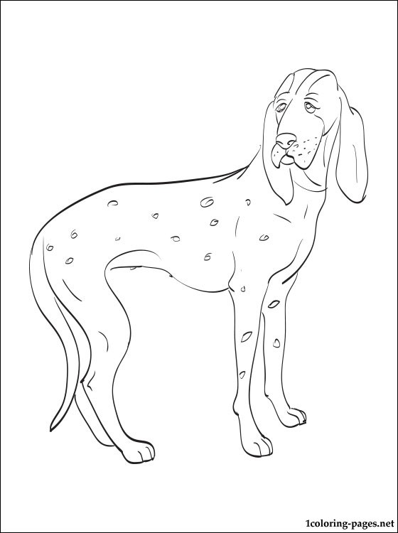 Porcelaine Coloring Page Coloring Pages