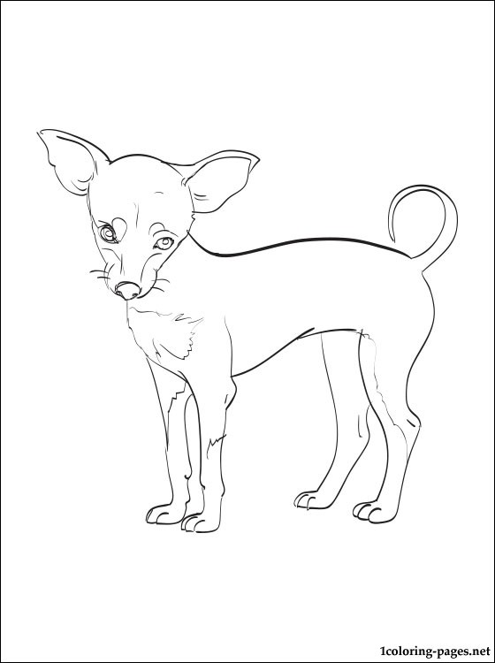 Prague Ratter Coloring Page Coloring Pages