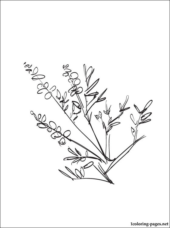 Heather Coloring Page For Free Coloring Pages