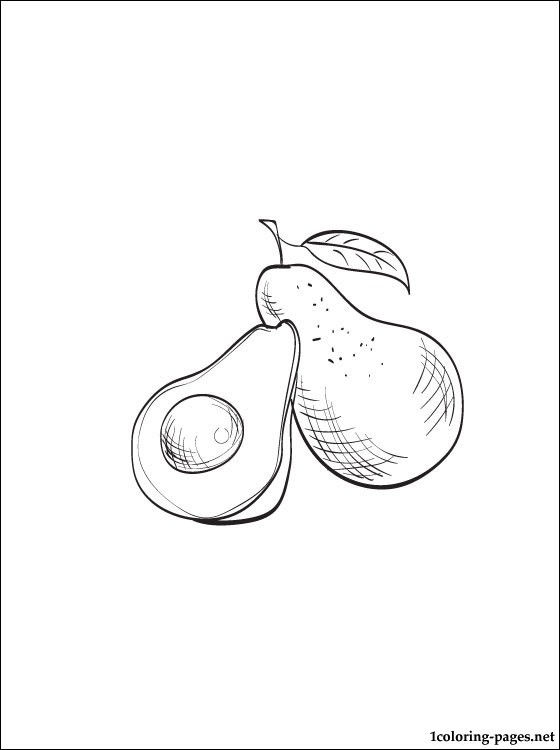Avocado Coloring Page To Print Out Coloring Pages