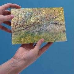 Greeting Card - Trees in Summer by Mark Noble
