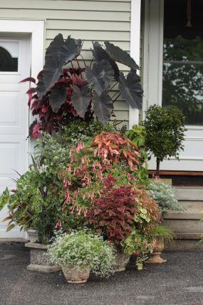Дизайн на даче - контейнерный сад