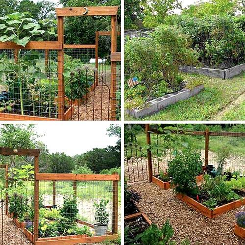 современный огород - приподнятые грядки